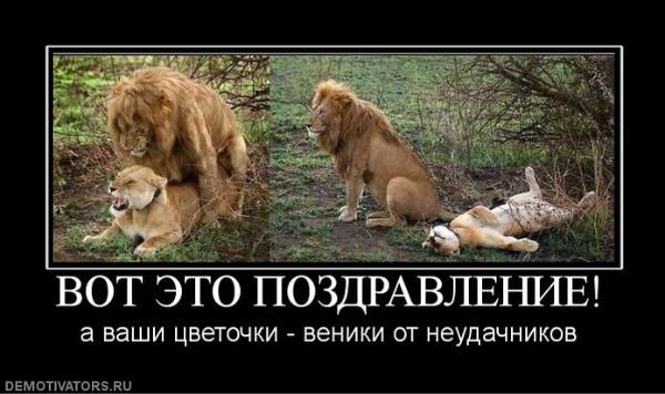 18116000_2011-11-16.jpg